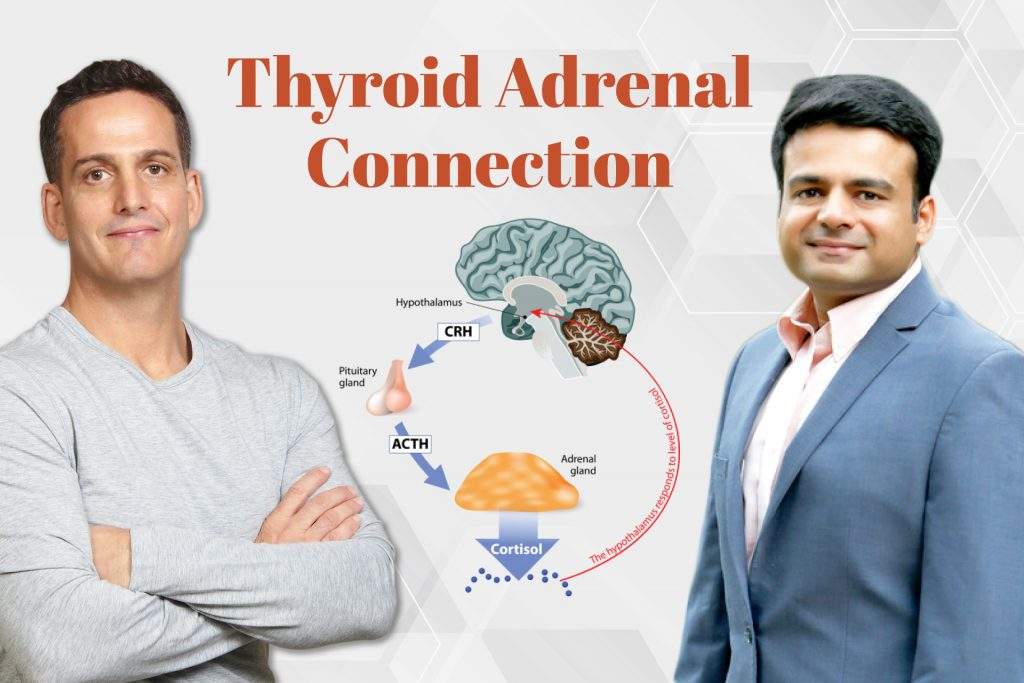 Thyroid Adrenal Connection