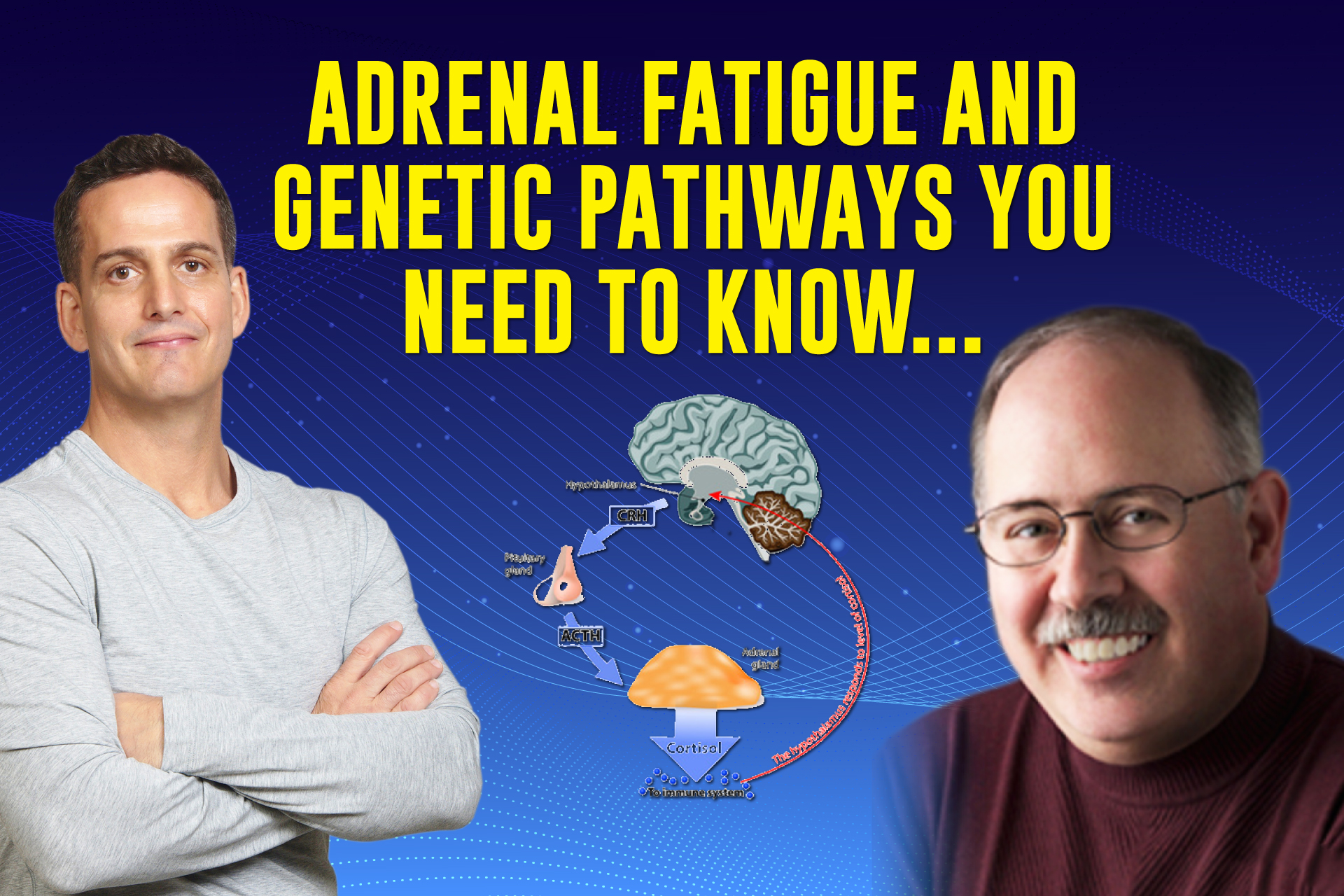 Adrenal Fatigue and Genetic Pathways You Need to Know