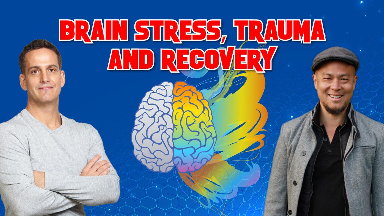 Brain Stress, Trauma, and Recovery